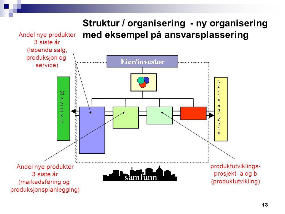 13 Struktur / organisering - ny organisering med eksempel på ansvarsplassering produktutviklings- prosjekt a og b (produktutvikling) Andel nye produkter 3 siste år (markedsføring og produksjonsplanlegging) Andel nye produkter 3 siste år (løpende salg, produksjon og service)