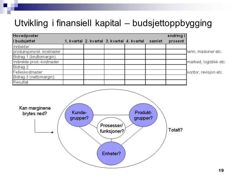19 Utvikling i finansiell kapital – budsjettoppbygging