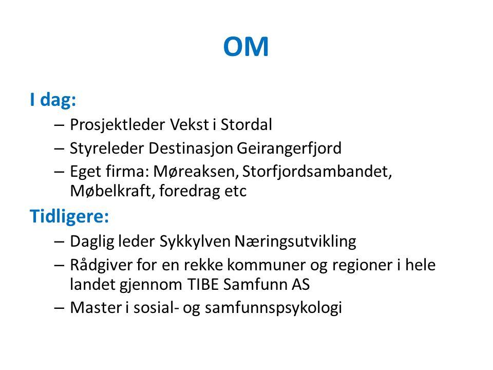 OM I dag: – Prosjektleder Vekst i Stordal – Styreleder Destinasjon Geirangerfjord – Eget firma: Møreaksen, Storfjordsambandet, Møbelkraft, foredrag et
