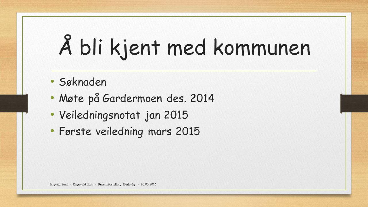 Å bli kjent med kommunen Søknaden Møte på Gardermoen des. 2014 Veiledningsnotat jan 2015 Første veiledning mars 2015 Ingvild Sehl - Ragnvald Riis - Pr