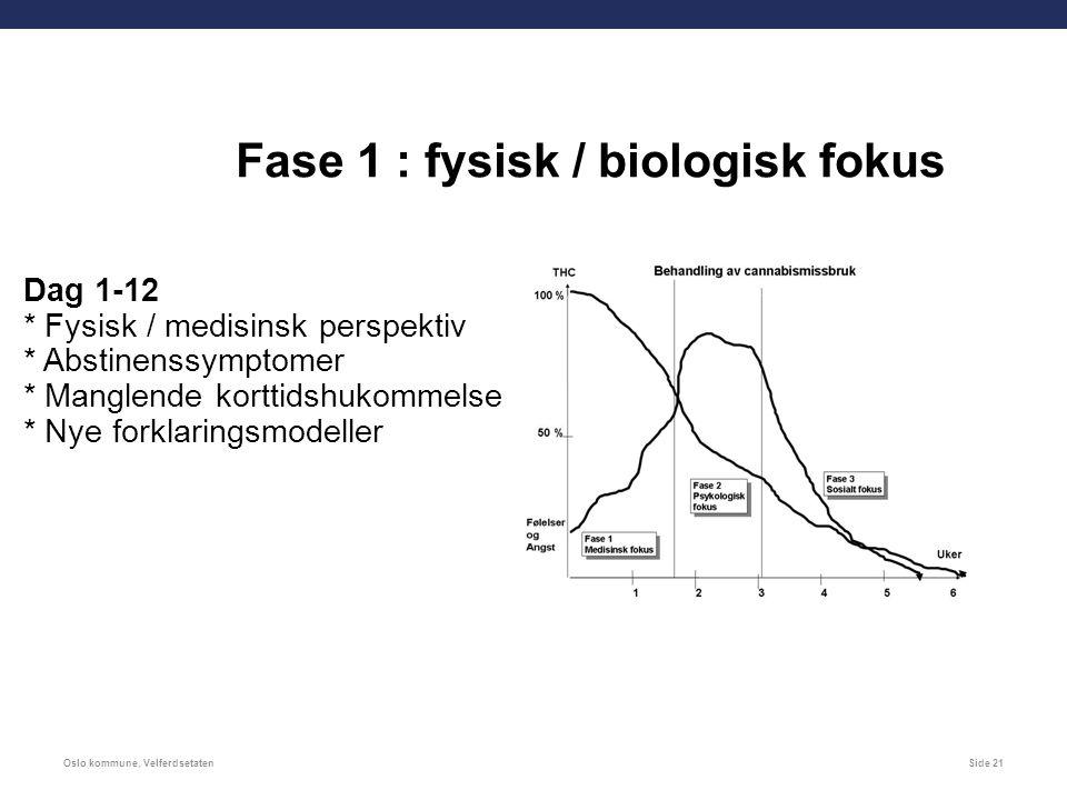 Oslo kommune, VelferdsetatenSide 21 Fase 1 : fysisk / biologisk fokus Dag 1-12 * Fysisk / medisinsk perspektiv * Abstinenssymptomer * Manglende korttidshukommelse * Nye forklaringsmodeller