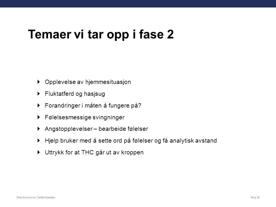 Oslo kommune, VelferdsetatenSide 36  Opplevelse av hjemmesituasjon  Fluktatferd og hasjsug  Forandringer i måten å fungere på.