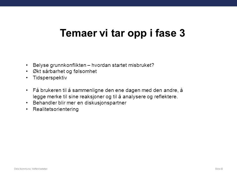 Oslo kommune, VelferdsetatenSide 43 Belyse grunnkonflikten – hvordan startet misbruket.