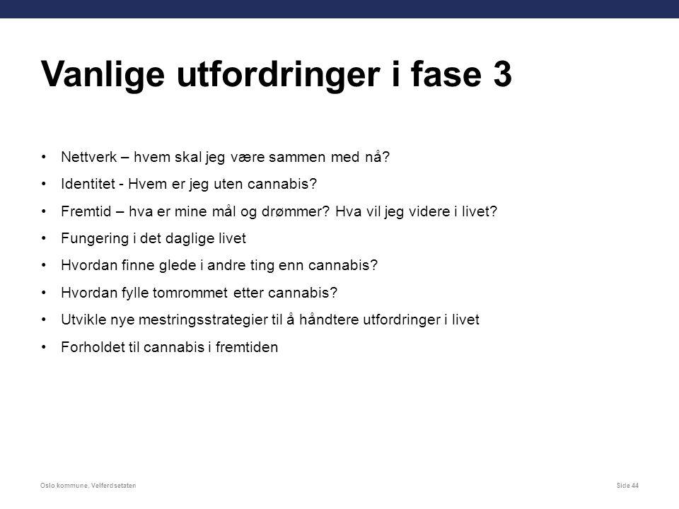 Oslo kommune, VelferdsetatenSide 44 Nettverk – hvem skal jeg være sammen med nå.