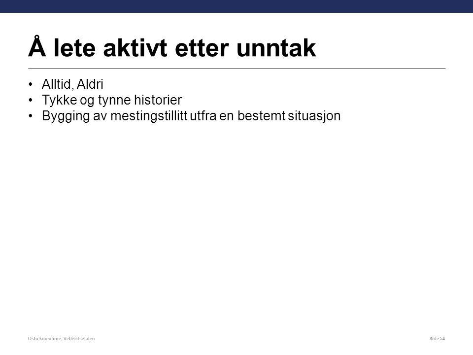 Å lete aktivt etter unntak Alltid, Aldri Tykke og tynne historier Bygging av mestingstillitt utfra en bestemt situasjon Oslo kommune, VelferdsetatenSide 54