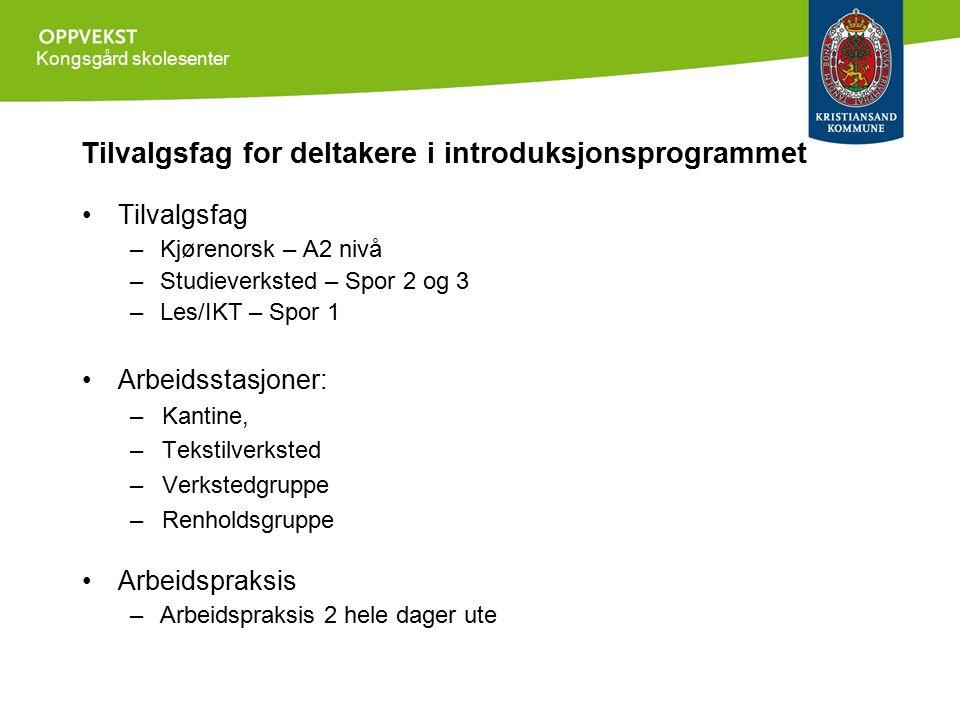 Kongsgård skolesenter Tilvalgsfag for deltakere i introduksjonsprogrammet Tilvalgsfag –Kjørenorsk – A2 nivå –Studieverksted – Spor 2 og 3 –Les/IKT – S