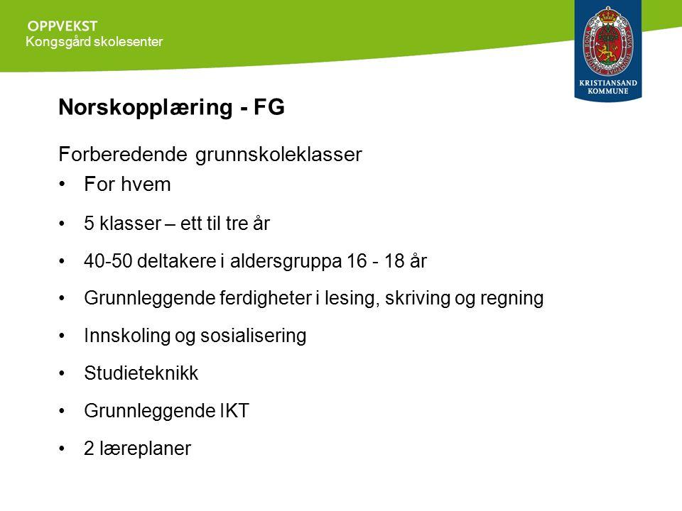 Kongsgård skolesenter Norskopplæring - FG Forberedende grunnskoleklasser For hvem 5 klasser – ett til tre år 40-50 deltakere i aldersgruppa 16 - 18 år Grunnleggende ferdigheter i lesing, skriving og regning Innskoling og sosialisering Studieteknikk Grunnleggende IKT 2 læreplaner
