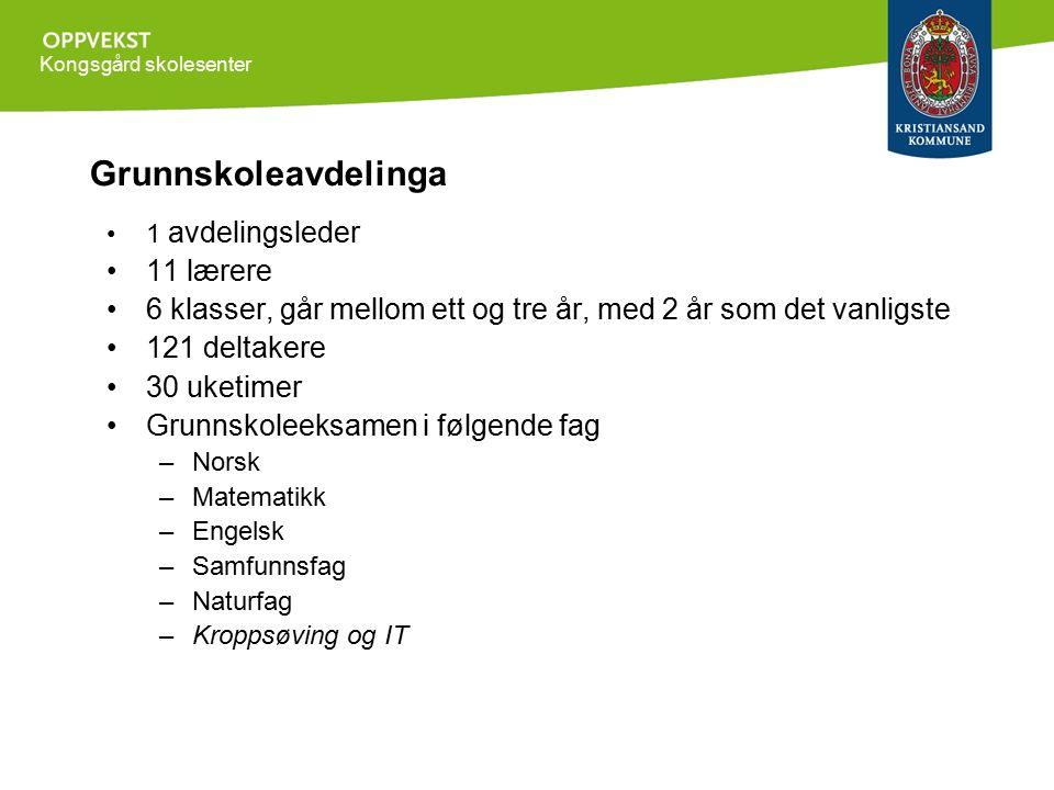 Kongsgård skolesenter Grunnskoleavdelinga 1 avdelingsleder 11 lærere 6 klasser, går mellom ett og tre år, med 2 år som det vanligste 121 deltakere 30