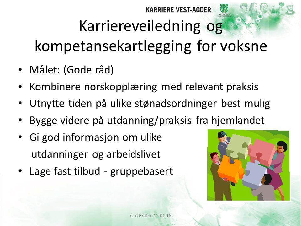 Karriereveiledning og kompetansekartlegging for voksne Målet: (Gode råd) Kombinere norskopplæring med relevant praksis Utnytte tiden på ulike stønadso