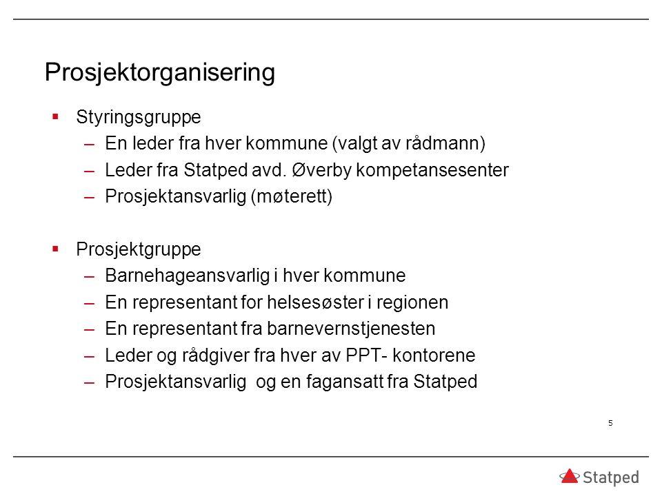 Prosjektorganisering  Styringsgruppe –En leder fra hver kommune (valgt av rådmann) –Leder fra Statped avd.
