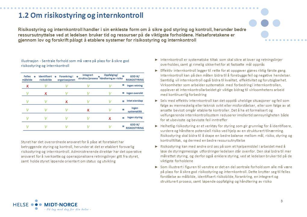 1.3 Revisjonskriterier Ved gjennomføring av revisjonen er det primært tatt utgangspunkt i forskrift om internkontroll i helse- og omsorgstjenesten, foretaksprotokoller og god praksis Lovgrunnlag Det er en rekke lover og forskrifter som regulerer området risikostyring og internkontroll.