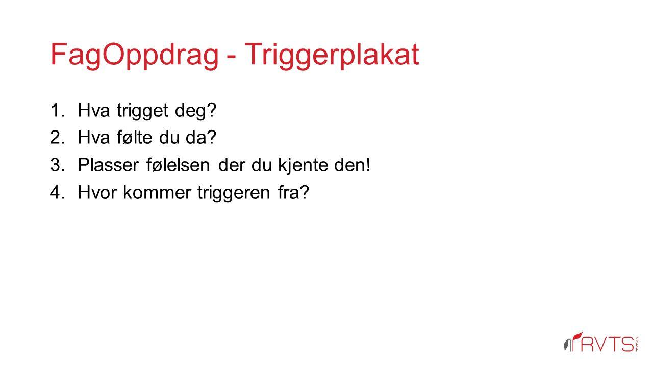 FagOppdrag - Triggerplakat 1.Hva trigget deg. 2.Hva følte du da.