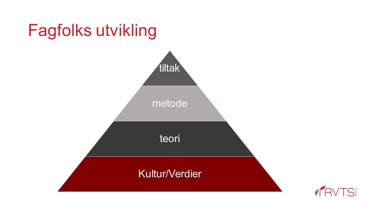 Fagfolks utvikling tiltak metode teori Kultur/Verdier