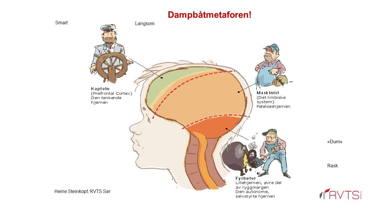 Hva skjer ved traumatisering Sanseinntrykk/følelser/kroppslige reaksjoner lagres dysfunksjonelt og fragmentert. Sammenhengen mellom hendelsen og reaks