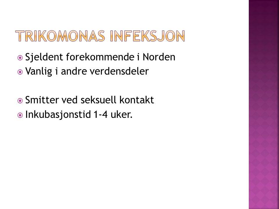  Sjeldent forekommende i Norden  Vanlig i andre verdensdeler  Smitter ved seksuell kontakt  Inkubasjonstid 1-4 uker.
