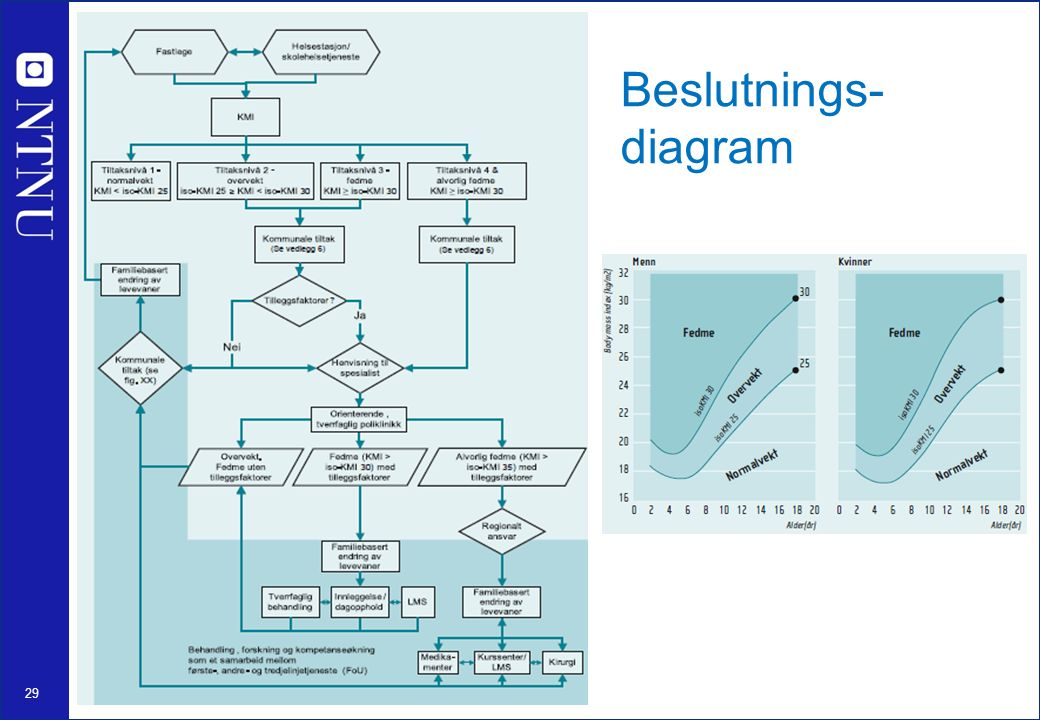 29 Beslutnings- diagram