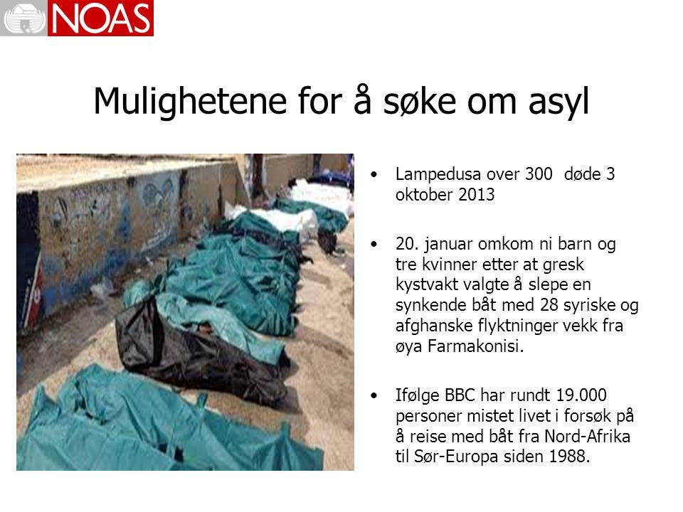 Mulighetene for å søke om asyl Lampedusa over 300 døde 3 oktober 2013 20.