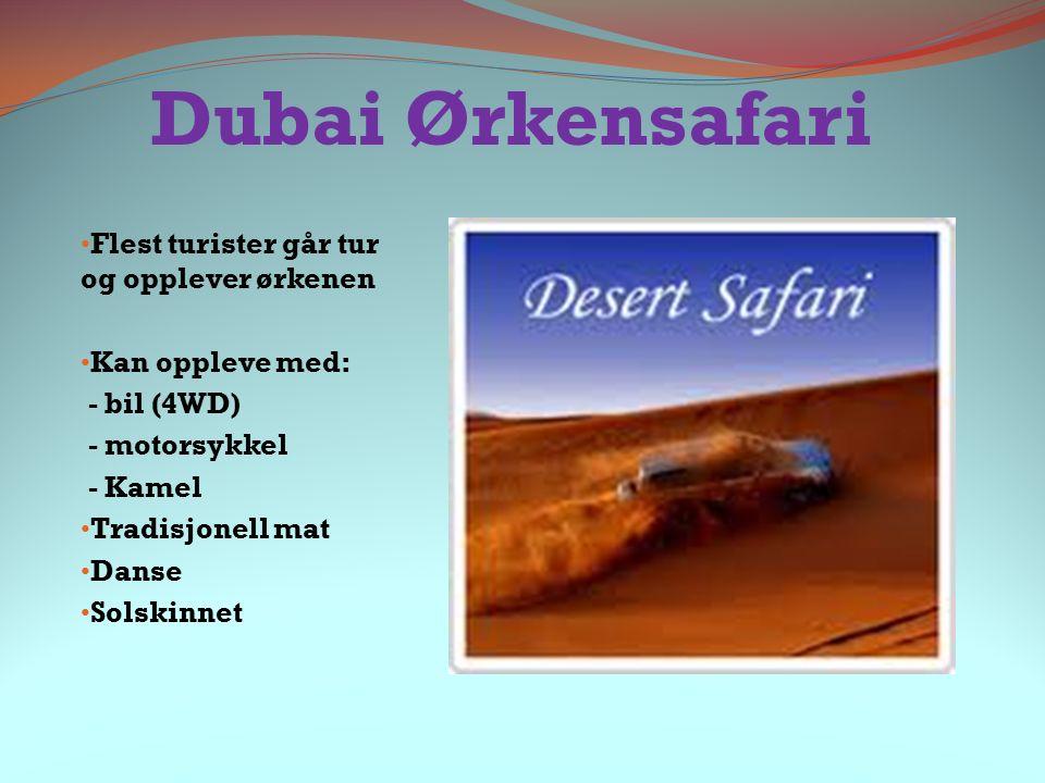 Dubai Ørkensafari Flest turister går tur og opplever ørkenen Kan oppleve med: - bil (4WD) - motorsykkel - Kamel Tradisjonell mat Danse Solskinnet