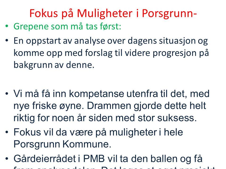 Fokus på Muligheter i Porsgrunn- Grepene som må tas først: En oppstart av analyse over dagens situasjon og komme opp med forslag til videre progresjon på bakgrunn av denne.