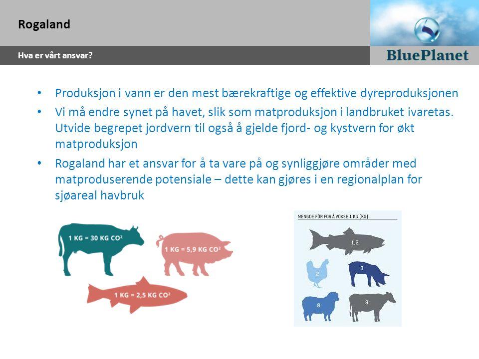 Rogaland Hva er vårt ansvar? Produksjon i vann er den mest bærekraftige og effektive dyreproduksjonen Vi må endre synet på havet, slik som matproduksj