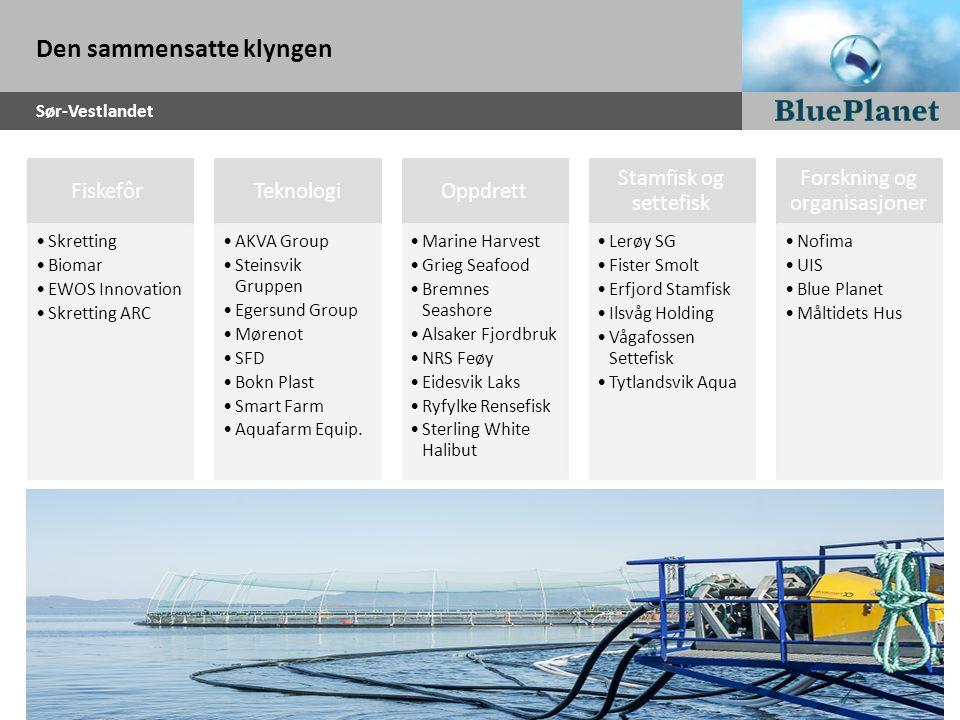 Den sammensatte klyngen Sør-Vestlandet Fiskefôr Skretting Biomar EWOS Innovation Skretting ARC Teknologi AKVA Group Steinsvik Gruppen Egersund Group M