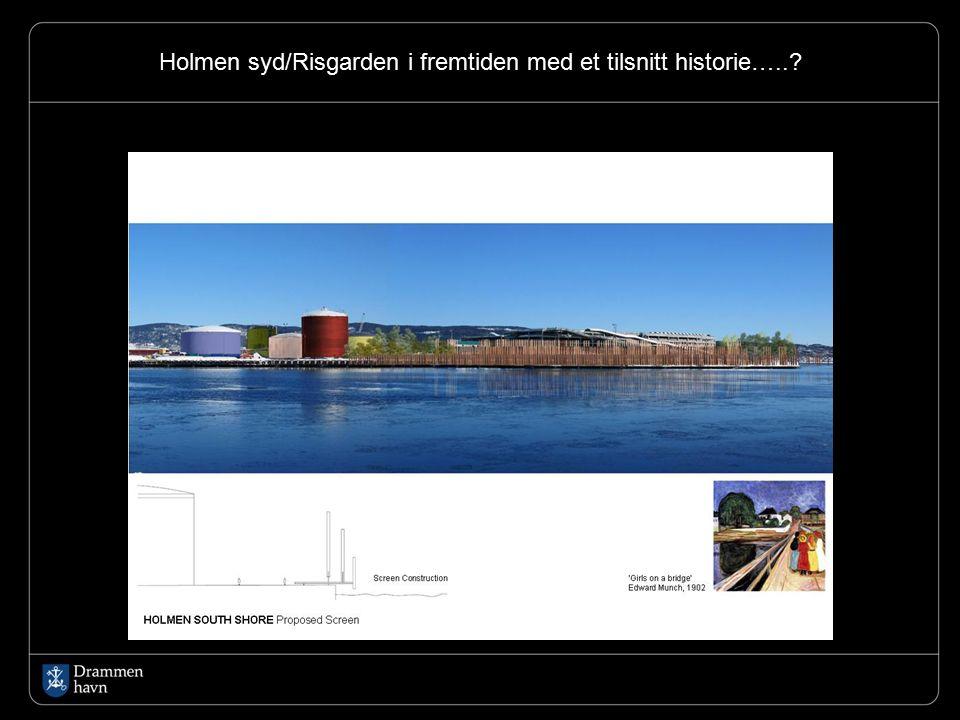Holmen syd/Risgarden i fremtiden med et tilsnitt historie…..