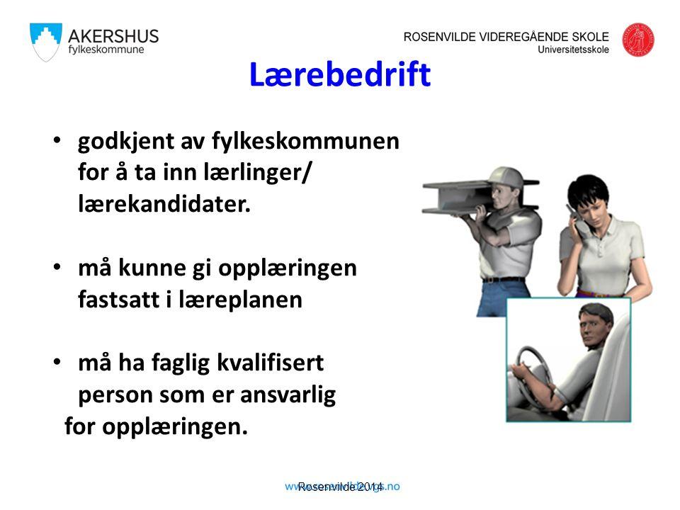 Rosenvilde 2014 Lærebedrift godkjent av fylkeskommunen for å ta inn lærlinger/ lærekandidater. må kunne gi opplæringen fastsatt i læreplanen må ha fag