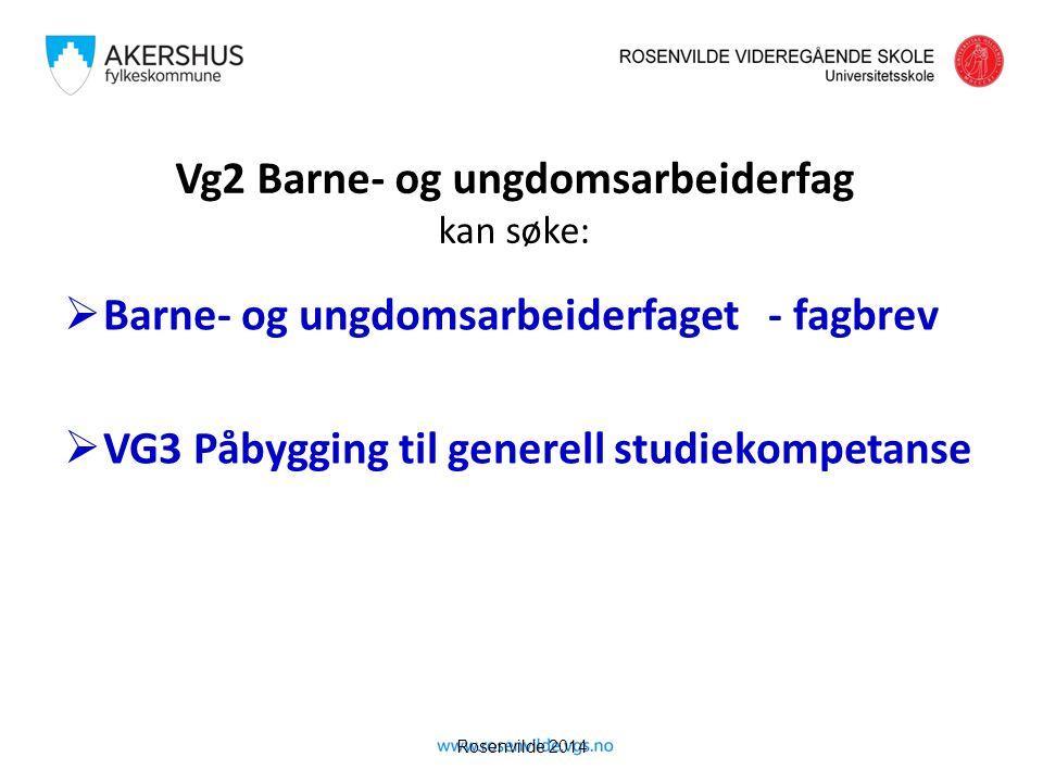 Rosenvilde 2014 Vg2 Barne- og ungdomsarbeiderfag kan søke:  Barne- og ungdomsarbeiderfaget - fagbrev  VG3 Påbygging til generell studiekompetanse