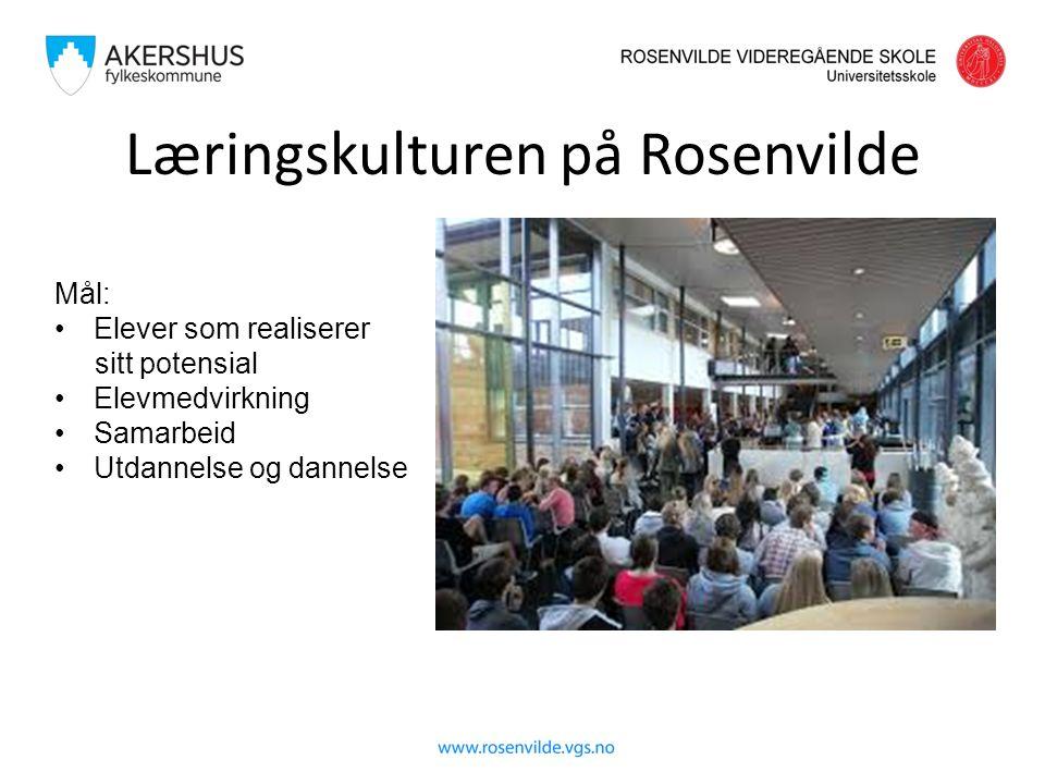 Mål: Elever som realiserer sitt potensial Elevmedvirkning Samarbeid Utdannelse og dannelse Læringskulturen på Rosenvilde