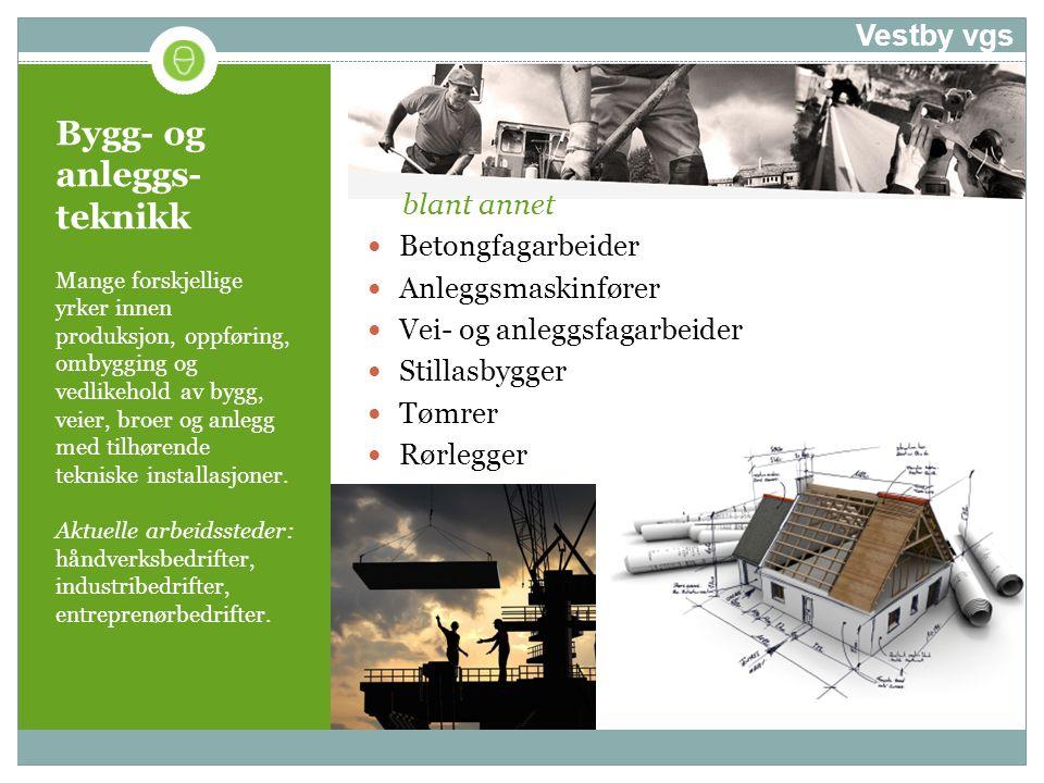 Bygg- og anleggs- teknikk Mange forskjellige yrker innen produksjon, oppføring, ombygging og vedlikehold av bygg, veier, broer og anlegg med tilhørend