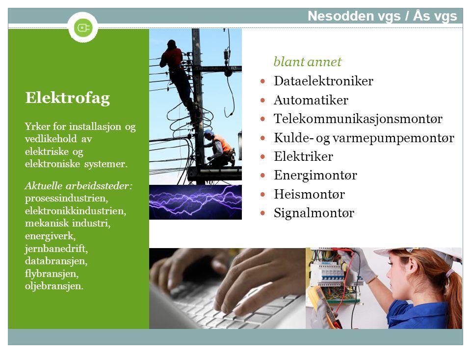 Elektrofag Yrker for installasjon og vedlikehold av elektriske og elektroniske systemer. Aktuelle arbeidssteder: prosessindustrien, elektronikkindustr