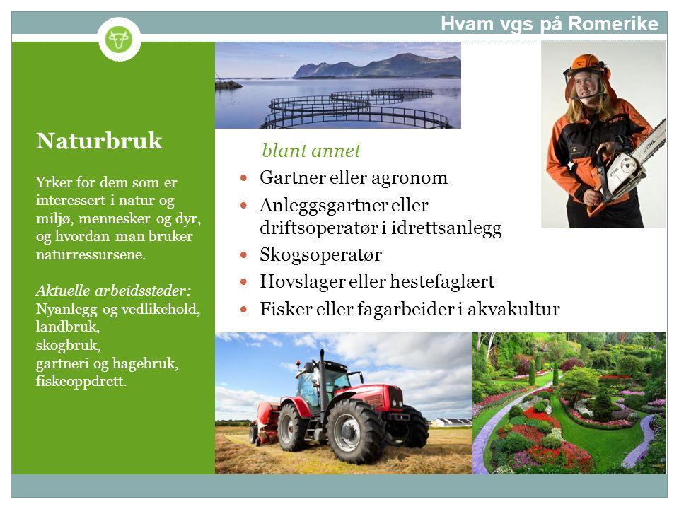 Naturbruk Yrker for dem som er interessert i natur og miljø, mennesker og dyr, og hvordan man bruker naturressursene. Aktuelle arbeidssteder: Nyanlegg