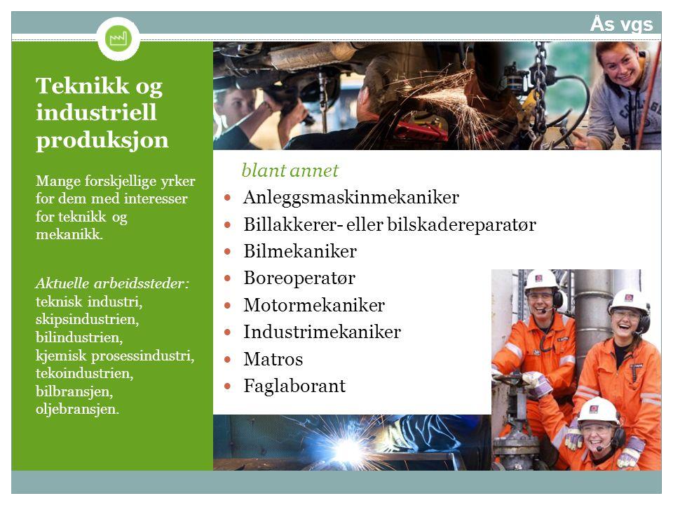 Teknikk og industriell produksjon Mange forskjellige yrker for dem med interesser for teknikk og mekanikk. Aktuelle arbeidssteder: teknisk industri, s