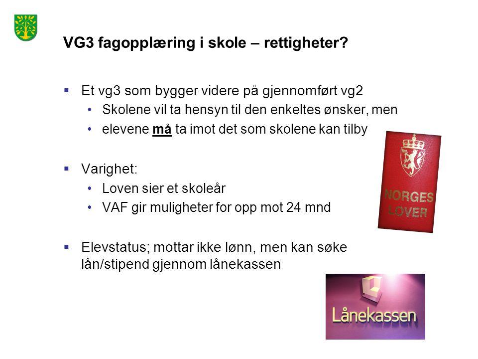 VG3 fagopplæring i skole – rettigheter.