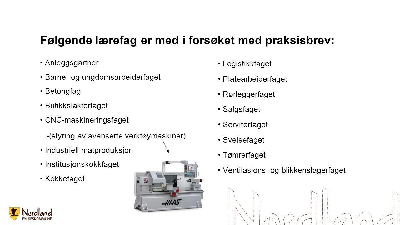 Anleggsgartner Barne- og ungdomsarbeiderfaget Betongfag Butikkslakterfaget CNC-maskineringsfaget -(styring av avanserte verktøymaskiner) Industriell m