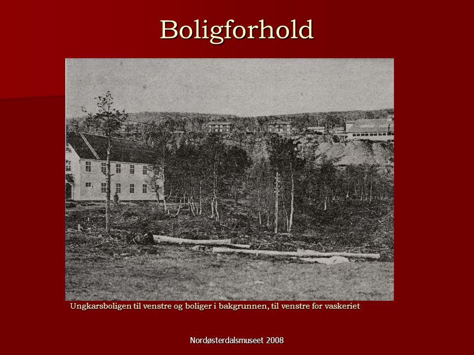 Nordøsterdalsmuseet 2008 Boligforhold Ungkarsboligen til venstre og boliger i bakgrunnen, til venstre for vaskeriet