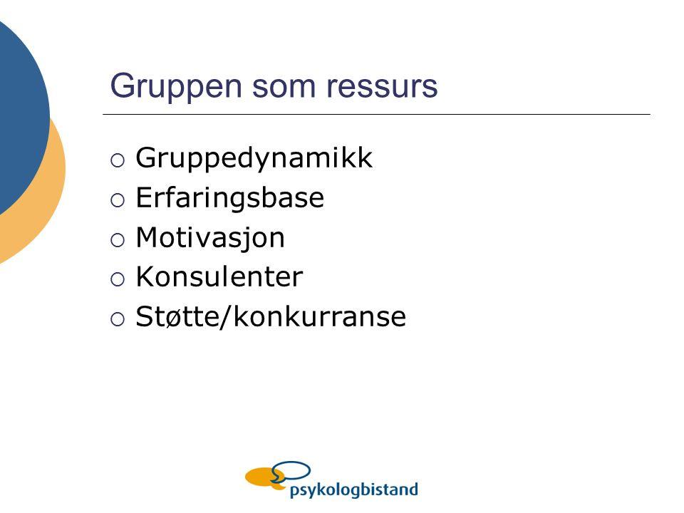 Gruppen som ressurs  Gruppedynamikk  Erfaringsbase  Motivasjon  Konsulenter  Støtte/konkurranse