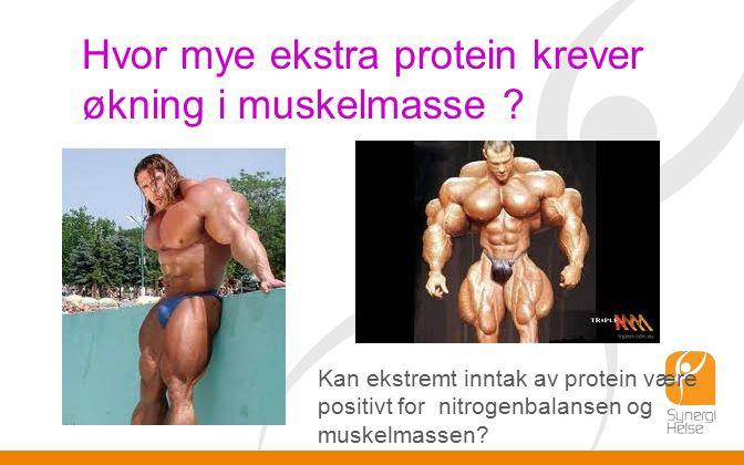 Hvor mye ekstra protein krever økning i muskelmasse .