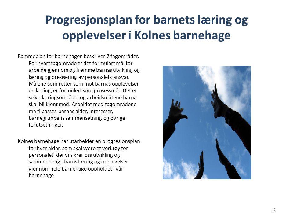 Progresjonsplan for barnets læring og opplevelser i Kolnes barnehage Rammeplan for barnehagen beskriver 7 fagområder.