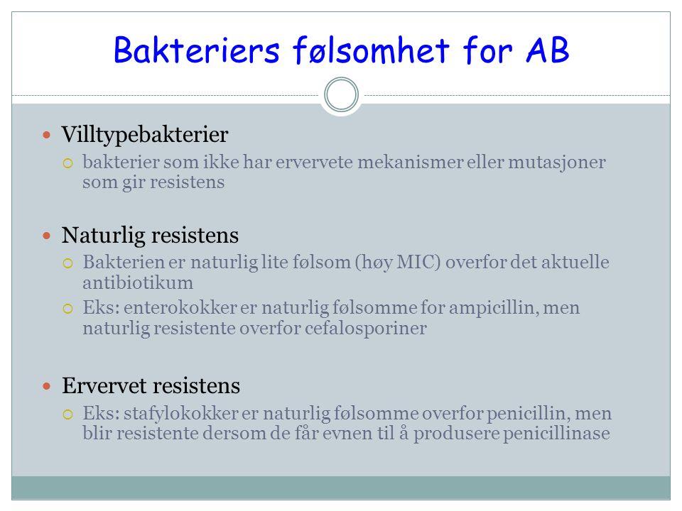 Bakteriers følsomhet for AB Villtypebakterier  bakterier som ikke har ervervete mekanismer eller mutasjoner som gir resistens Naturlig resistens  Bakterien er naturlig lite følsom (høy MIC) overfor det aktuelle antibiotikum  Eks: enterokokker er naturlig følsomme for ampicillin, men naturlig resistente overfor cefalosporiner Ervervet resistens  Eks: stafylokokker er naturlig følsomme overfor penicillin, men blir resistente dersom de får evnen til å produsere penicillinase