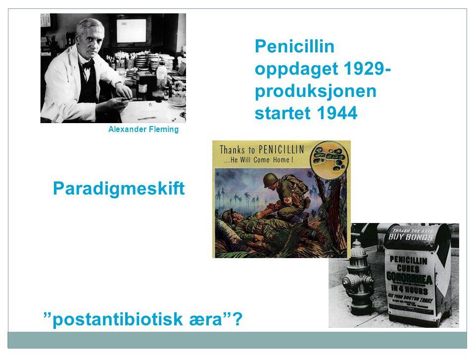 Penicillin G Cefalosporin-kjernen Beta-laktam ringen Betalaktam-antibiotika Spesielle metoder – Resistenstesting  -Laktamase-produksjon: