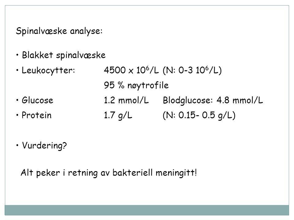 Spinalvæske analyse: Blakket spinalvæske Leukocytter: 4500 x 10 6 /L(N: 0-3 10 6 /L) 95 % nøytrofile Glucose1.2 mmol/LBlodglucose: 4.8 mmol/L Protein1.7 g/L(N: 0.15- 0.5 g/L) Vurdering.