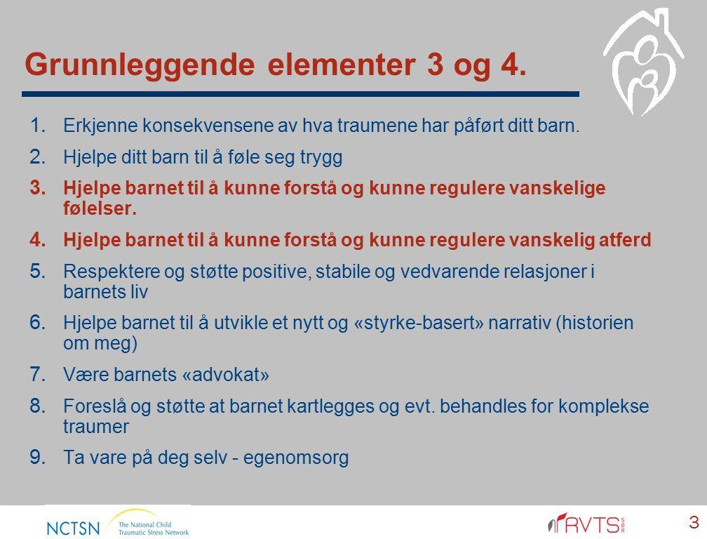 Grunnleggende elementer 3 og 4. 3 1. Erkjenne konsekvensene av hva traumene har påført ditt barn.