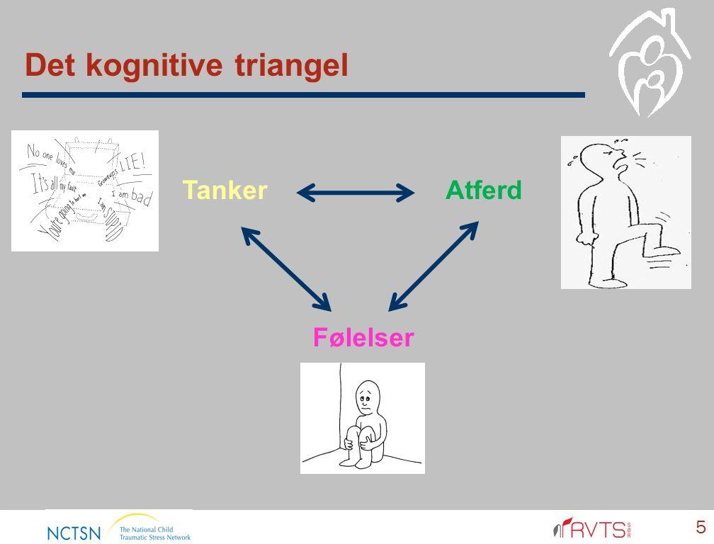 Traume og det kognitive triangel  Se sammenhengen mellom sine følelser, tanker, og sin atferd  Forstå og uttrykke emosjonelle reaksjoner  Kunne tolke andres følelsesuttrykk  Kontrollere sine reaksjoner når traumeminnene blir trigget og de føler seg truet.