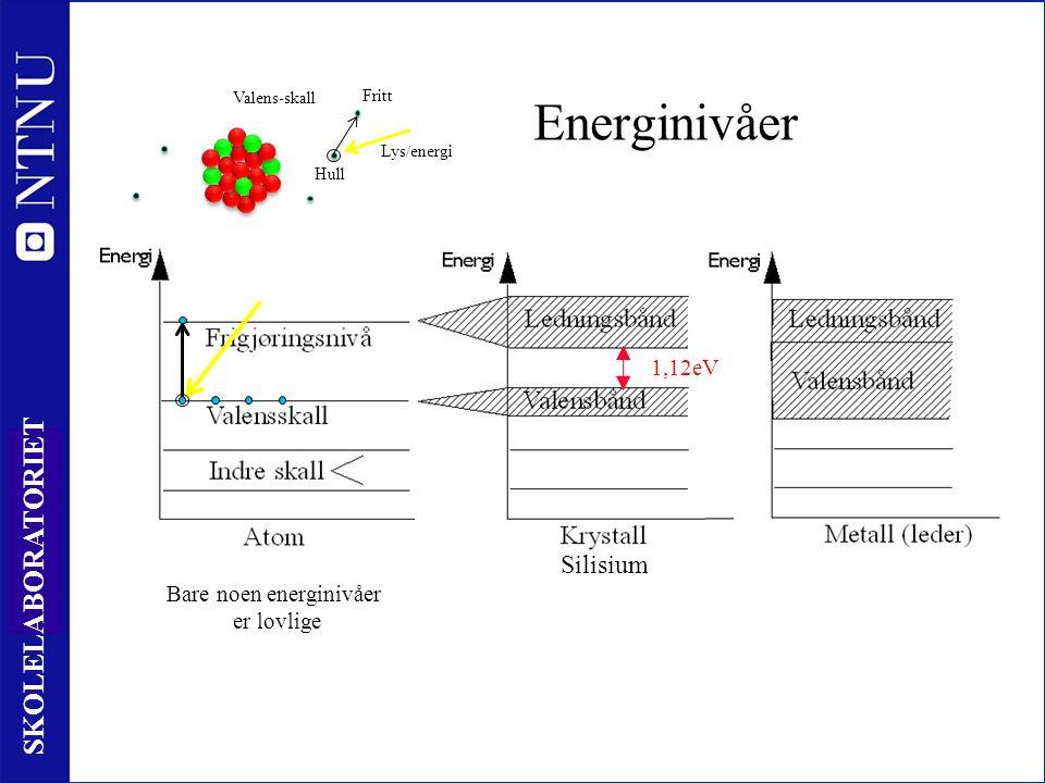 23 SKOLELABORATORIET Energinivåer Bare noen energinivåer er lovlige 1,12eV Valens-skall Lys/energi Fritt Hull Silisium