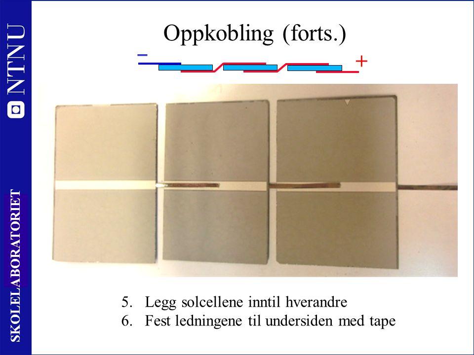 53 SKOLELABORATORIET ‒ + Oppkobling (forts.) 5.Legg solcellene inntil hverandre 6.Fest ledningene til undersiden med tape