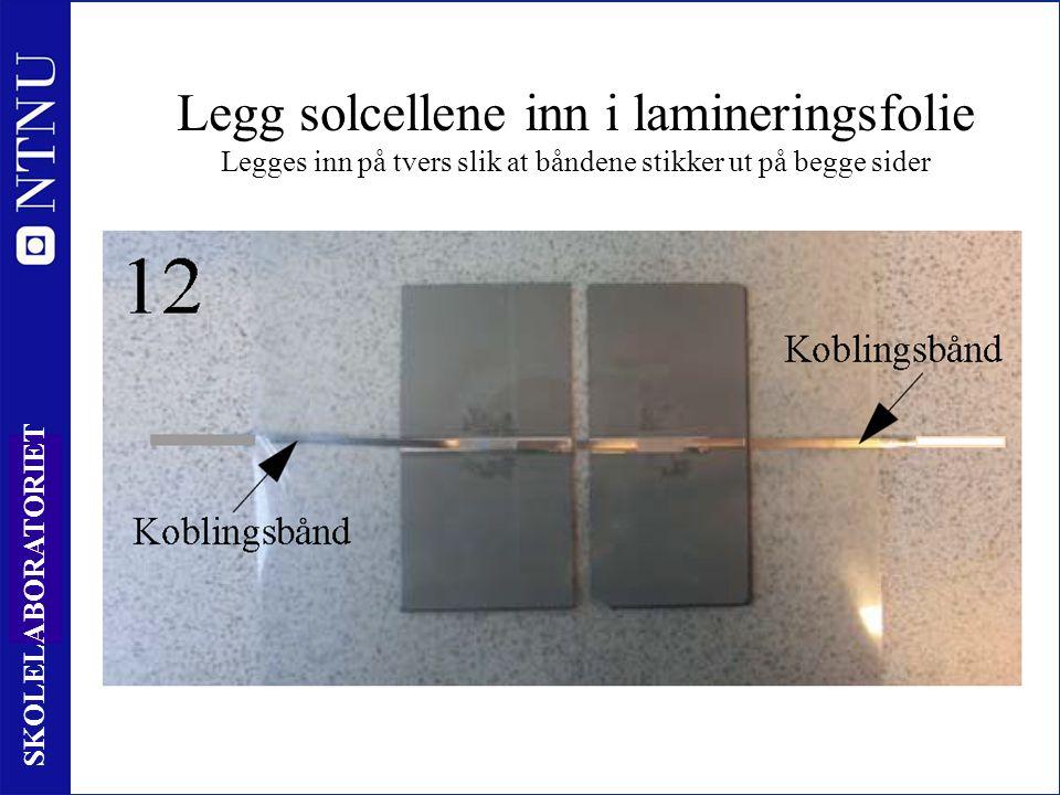 28 SKOLELABORATORIET Legg solcellene inn i lamineringsfolie Legges inn på tvers slik at båndene stikker ut på begge sider