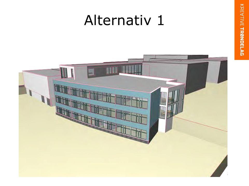Alternativ 1 13