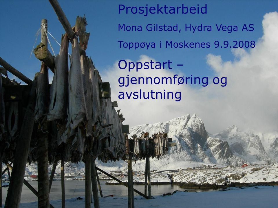 Prosjektarbeid Mona Gilstad, Hydra Vega AS Toppøya i Moskenes 9.9.2008 Oppstart – gjennomføring og avslutning