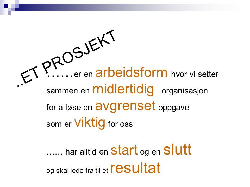 3.ORGANISERING 3.1 Prosjektledelse Her anføres hvem som er prosjektansvarlig og prosjektleder.
